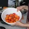lab12-laganela-vege-kuhanje-12